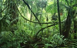 Algemene informatie Costa Rica